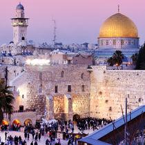 【イスラエルの子育て】自己主張を大切に出る杭を伸ばすかかわり