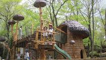 人気のアスレチック施設「わくわく大冒険の森」が、大リニューアル