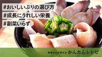 【魚屋さんが教える】これ一品で完結!わかめご飯のぶりしゃぶ丼