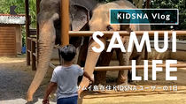 【KIDSNA Vlog】サムイ島在住ユーザーから届いた、子どもと過ごす日常