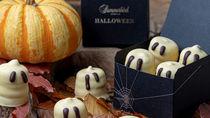 サマーバード オーガニックからハロウィン限定チョコレートが登場