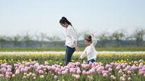 子ども連れで行きたい。東北や関東、東海や関西、九州の魅力は