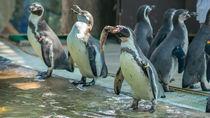 静岡県周辺にある海の生き物に触れる体験ができる水族館