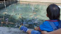 四国周辺にある水族館の料金とお得なクーポン情報