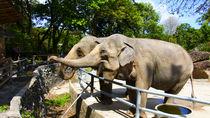 都内にある動物園の料金はいくら?家族で行きたい5園の料金とおすすめスポット