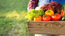 離乳食はいつから?野菜の離乳食時期別の進め方とアイディア