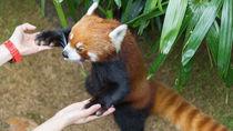 長野周辺のえさやりイベントが楽しめる動物園へ家族で出かけよう