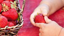 離乳食後期のいちごを使ったレシピやアレンジ方法とママたちの体験談