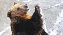 関東でさまざまな種類の生き物を飼育している動物園