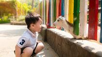 関東の動物園。夏休みに行きたい、ママ目線で選んだ子連れにおすすめのスポットとは