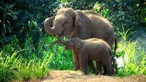 神奈川周辺のさまざまな動物たちに会える動物園で世界中の生き物を見に行こう