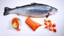 離乳食中期に鮭をどう使う?レシピや冷凍方法などママたちの体験談を紹介