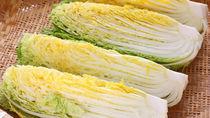 離乳食完了期の白菜はどう進める?アレンジレシピや冷凍保存方法について