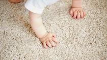 ウールカーペットの簡単な掃除方法や手順とお手入れのコツ