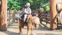 子どもと一緒に楽しめる!神奈川県周辺でイベントを開催している動物園