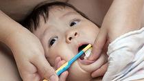 ママたちに人気の赤ちゃん用歯ブラシは?選び方や種類を調査