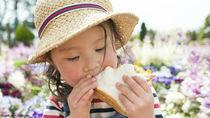【体験談】夏の子どものお弁当。暑い日にもおいしく食べられる工夫とは