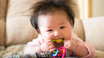 生後6ヶ月ごろの人気のおもちゃ。手作りおもちゃやおもちゃに関する悩みを調査