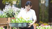 主婦がアルバイトをするときの扶養範囲や確定申告。扶養外の場合や年末調整の書き方
