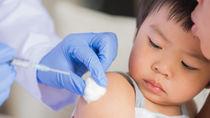 【小児科医監修】日本脳炎の予防接種。接種時期や回数、副反応について