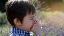 【耳鼻科医監修】子どもの花粉症は何歳からなる?可能性や受診目安について