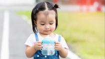 3歳の子どもに選ぶ水筒の種類。容量やサイズ、ステンレスなどの素材