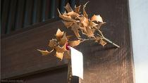 節分の飾り付けのアイデア。飾りの意味や手作り、折り紙での作り方