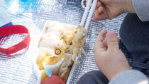 2歳児が食べやすいお弁当。おにぎりやサンドイッチのレシピなど