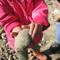 子どもや大人の潮干狩りの服装の選び方。コーデのアイデアなど