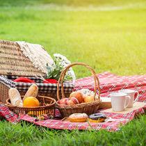 夫婦でピクニックを楽しもう!持ち物や楽しみ方などを紹介