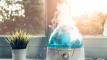 加湿器の掃除方法。つけおき掃除や日々のお手入れの仕方について