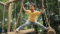 幼児とアスレチックで遊びたい!室内を含めた場所の選び方や注意点
