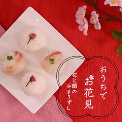 おうちでお花見気分!桜と鯛の手まりずし