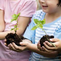 5歳までのしつけや環境が人生を決める。ニュースでよく耳にする「教育格差」とは?