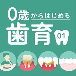 【完全図解】小児歯科医が教える、0歳から歯医者に通うべき理由