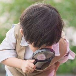 将来「伸びる子」になる第一歩。3歳からできる、親子アサガオ観察