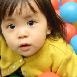 2歳児が楽しめる遊び場は?ママたちの体験談からおすすめの場所を紹介