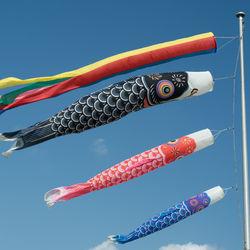鯉のぼりの意味や飾る時期。色の由来や吹き流しの意味など、子ども向けに説明しよう