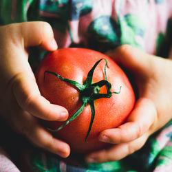 離乳食はいつから?トマトの離乳食時期別の進め方とアイディア
