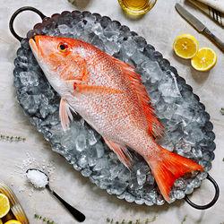 離乳食中期に鯛を使ったママたちのアレンジレシピや冷凍方法