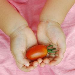 離乳食完了期のトマトの進め方。生トマトの離乳食レシピやアレンジ