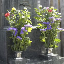 春と秋に迎えるお彼岸。お供えする花の名前や種類、贈るときのマナーや相場