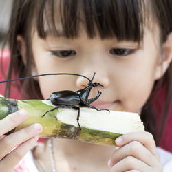 カブトムシの飼い方。幼虫やさなぎ、成虫の成長過程別や子ども向けの簡単な飼い方とコツ