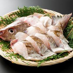 離乳食に使える白身魚の種類は?初期から完了期までのおすすめレシピ