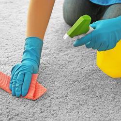 カーペットの掃除方法。お漏らしや嘔吐で汚れたときに揃えておきたい道具やコツ