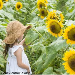 花を使った名付け方。生まれた季節の花や好きな花の漢字を使った名前を紹介