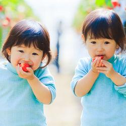 双子の子育てについて。楽しいときや大変なときあるあるや辛いときの工夫