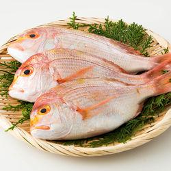 鯛の煮汁をリメイクして離乳食を作ろう!魚のうま味をいかした離乳食レシピ