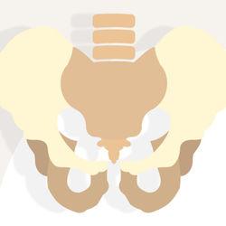 【ママの体と向き合う】骨盤調整の本質は姿勢にあった