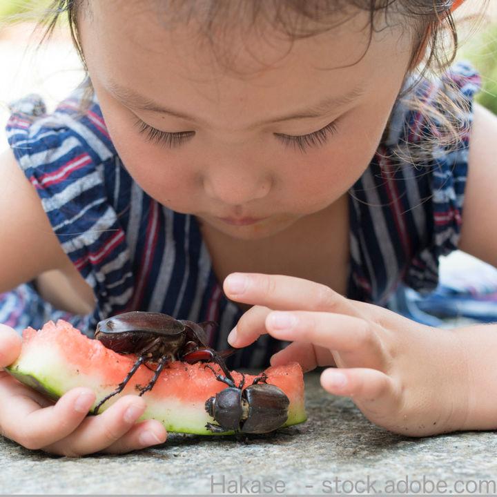 5歳頃の一人遊びの様子。好きなおもちゃや遊び方など